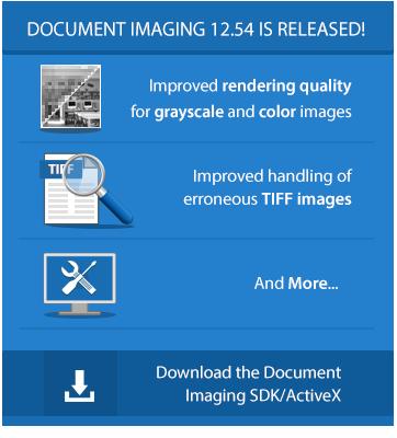 Document Imaging SDK/ActiveX