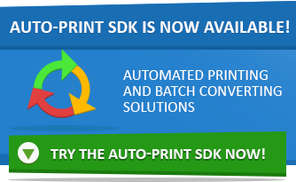 Auto-print SDK is released!