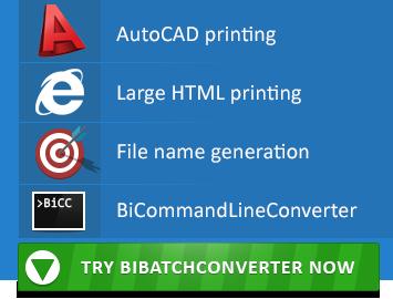 Try BiBatchConverter 4.04 Now!